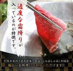 【ふるさと納税】宮崎県産黒毛和牛4等級以上肩(ウデ)スライス500g 画像1