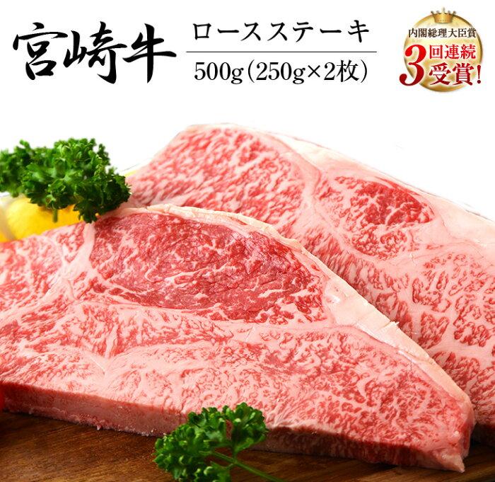 【ふるさと納税】宮崎牛ロースステーキ(250g×2枚)&合挽きハンバーグ(100g×4個)セット《合計900g》