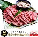 【ふるさと納税】宮崎和牛ウデ・モモ焼肉&牛ミックスホルモンセ...