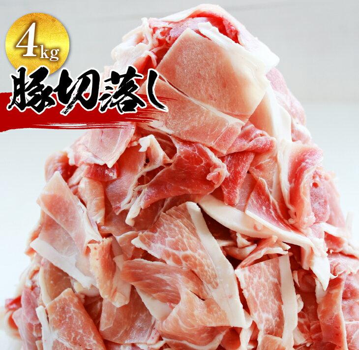 10パックでお届け!豚切落し4kg《都農町加工品》