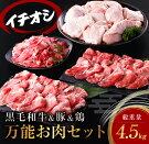 【ふるさと納税】お楽しみ黒毛和牛&豚&鶏『万能お肉セット』総重量4.5kg