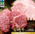 【ふるさと納税】宮崎牛5等級ヒレステーキ&宮崎牛5等級サーロインステーキ(合計800g)都農町加工品