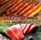 【ふるさと納税】うなぎ2尾&宮崎牛カルビ(三角バラ)焼肉セット