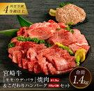 【ふるさと納税】宮崎牛『モモ・ウデ・バラ』焼肉(1.2kg)&こだわりハンバーグ(100g×2個)セット《合計1.4kg》