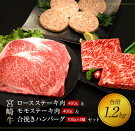 【ふるさと納税】宮崎牛ロースステーキ肉400g&モモステーキ肉400g&合挽きハンバーグ(100g×4個)セット《合計1.2kg》