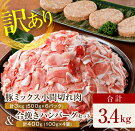【ふるさと納税】【訳あり】豚ミックス小間切れ肉(500g×6袋)&合挽きハンバーグ(100g×4個)合計3.4kg