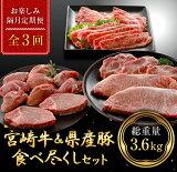 【ふるさと納税】肉《3か月お楽しみ隔月定期便》宮崎牛&県産豚食べ尽くしセット(1.2kg×3回)総重量3.6kg