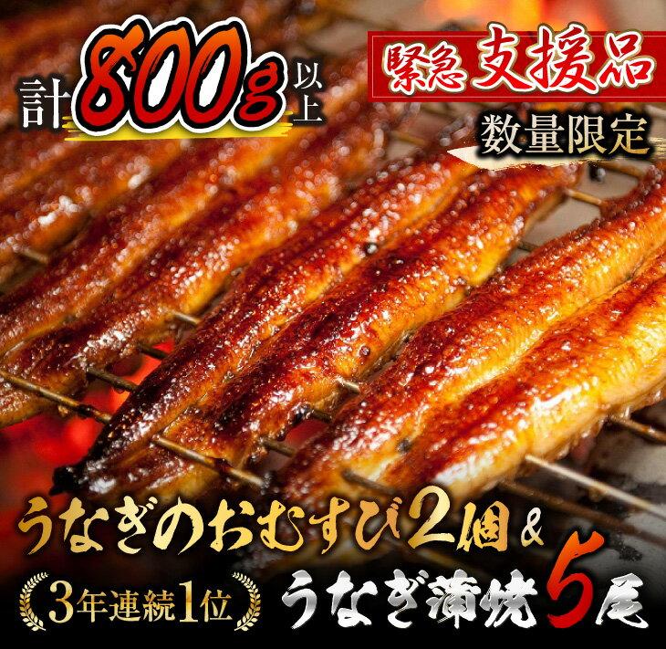 [緊急支援品]うなぎ蒲焼5尾(計800g以上)&うなぎのおむすび2個(お楽しみセット)国産鰻(ウナギ・さんしょう・たれセット)