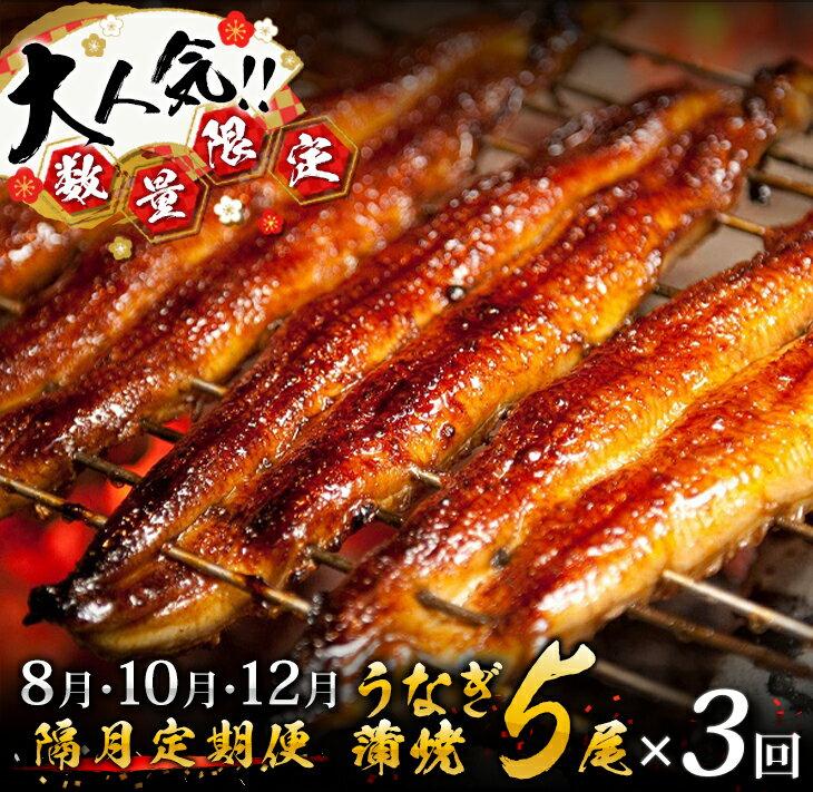 うなぎ蒲焼5尾×3回(計2.4kg以上) 国産鰻