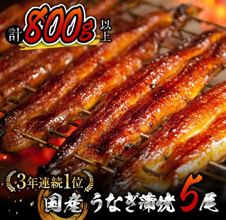 【ふるさと納税】うなぎ蒲焼5尾(計800g以上)国産鰻(ウナギ・さんしょう・たれセット)