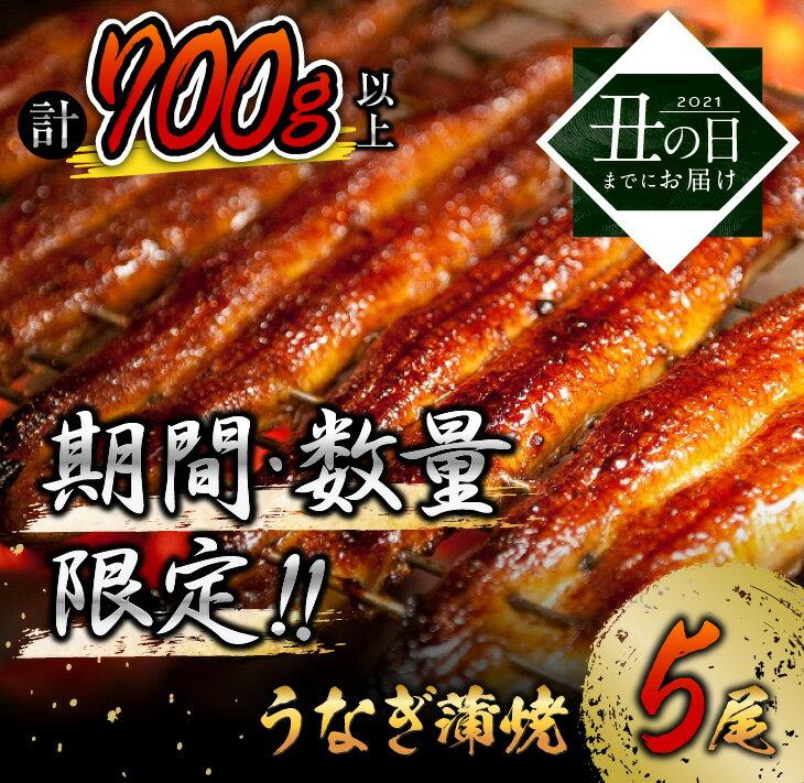 うなぎ蒲焼2尾(計320g以上)