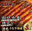 【ふるさと納税】《期間・数量限定》うなぎ蒲焼3尾(計600g以上)国産鰻(ウナギ・さんしょう・たれセット)