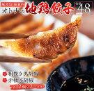 【ふるさと納税】≪無添加・無着色≫オトナの地鶏餃子2種セット(合計48個)