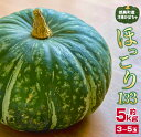 【ふるさと納税】洋種かぼちゃ「ほっこり133」計5kg(都農