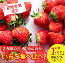 【ふるさと納税】JA尾鈴産『さがほのか&ゆめのか』いちご食べ比べセット(計1kg以上)