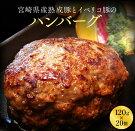 【ふるさと納税】宮崎県産熟成豚とイベリコ豚の極旨ハンバーグ120g×15個