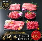 【ふるさと納税】6か月お楽しみ定期便『宮崎牛スペシャル6種セット』合計4.6kg