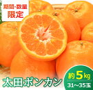 【ふるさと納税】都農町産『太田ポンカン』計5kg(30〜36玉)