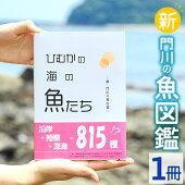 【ふるさと納税】AI-1門川の魚図鑑