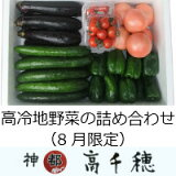 【ふるさと納税】C-8高冷地野菜の詰め合わせ(7〜9月限定)