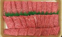 【ふるさと納税】A-3高千穂牛焼肉用A