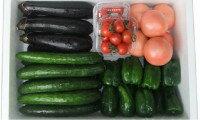 【ふるさと納税】C-8高冷地野菜の詰め合わせ(8月限定)