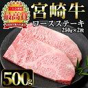 【ふるさと納税】宮崎牛ロースステーキ(計500g・250g×2枚)美味しい牛肉をご家庭で!【A-137】【ミヤチク】