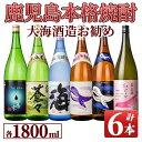 【ふるさと納税】大海酒造のオススメ焼酎(計6本・各1.8L)