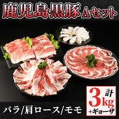 【ふるさと納税】488-1鹿児島黒豚Aセット3L+ギョーザ【和田養豚】
