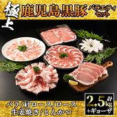【ふるさと納税】991-1極上鹿児島黒豚バラエティセット【和田養豚】