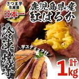 100日熟成海連焼芋&はるかスティック【海連】1-12