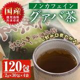 【ふるさと納税】出水農産グァバ茶快然王【出水酒造】
