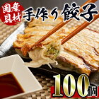 【ふるさと納税】国産豚肉使用!手作り餃子100個セット(10個×10パック)一つ一つ手作り!ビールのお供に相性抜群!【スーパーよしだ】