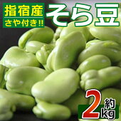 【ふるさと納税】そら豆さや付き(約2kg)【アグリスタイル】