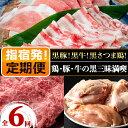 【ふるさと納税】<定期便!全6回>鶏・豚・牛の黒三昧満喫定期
