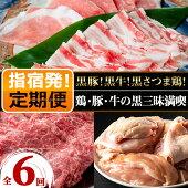 【ふるさと納税】<定期便!全6回>鶏・豚・牛黒三昧満喫定期便