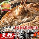 【ふるさと納税】指宿市山川漁協の漁師が作った美味しい干物(5...