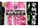 【ふるさと納税】種子島安納芋黒豚しゃぶしゃぶ・すき焼き用ファミリーセット 600g C