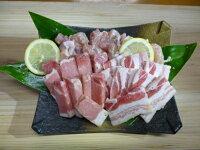 【ふるさと納税】黒潮シーズニング(味付黒豚・鶏肉セット)