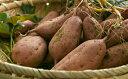 【ふるさと納税】種子島中園ファームの熟成安納芋(生芋)M〜Lサイズ10kg