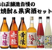 【ふるさと納税】焼酎・梅酒セット