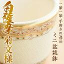 【ふるさと納税】白薩摩焼 ミニ盆栽鉢(菊文様)【桂木陶芸】