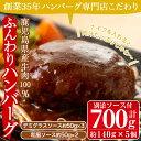 【ふるさと納税】《鹿児島県産牛肉100%・保存料・着色料不使...