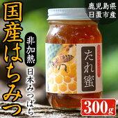 【ふるさと納税】≪数量限定≫日本みつばち808(300g)日置産の日本蜜蜂があつめたハチミツ!【日置南洲窯】