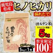 【ふるさと納税】《2020年10月末〜2021年2月末の間に発送予定》【数量限定】ヒノヒカリ(カルゲン米)10kg(5kg×2個)出来立てのお米をお届け!カルシウム豊富なお米!【つとむじぃグレープの森】