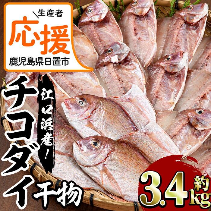 【ふるさと納税】<生産者応援!特別支援品><楽天限定!>チコダイの干物(3.4kg)チコ鯛は見た目は真鯛によく似ていますが、真鯛よりみずみずしく身が和らいのが特徴!【江口漁業協同組合】