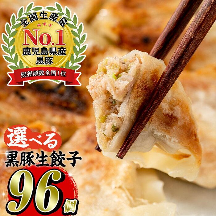 黒豚餃子計108個(12個入り×9パック)