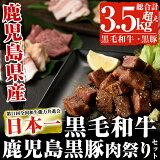 【ふるさと納税】和牛日本一!鹿児島黒毛和牛・鹿児島黒豚肉祭りセット計4.3kg【ナンチク】