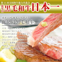 【ふるさと納税】日本一の牛肉!鹿児島県産黒毛和牛ロースステーキ2枚♪計400g【ナンチク】
