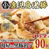 【ふるさと納税】鹿児島黒豚餃子18個×5パック計90個【大成畜産】
